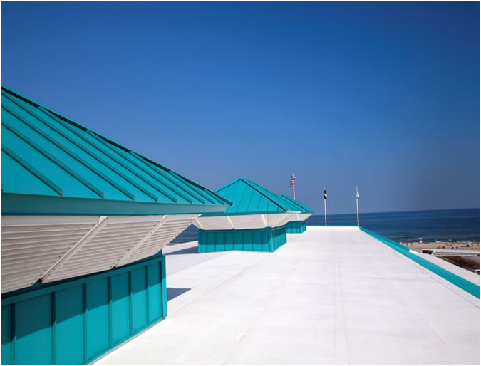 Carlisle Project - Roofing services for businesses performed by professionals.